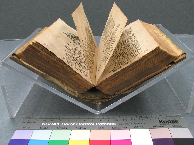 Parchment Book Treatment